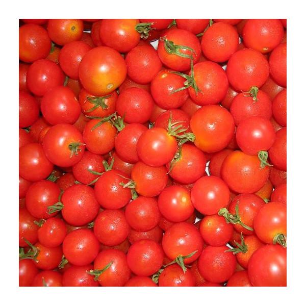 Tomate cerise la bonne graine - Pied de tomate cerise ...