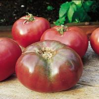 Tomate Cherokee Purple